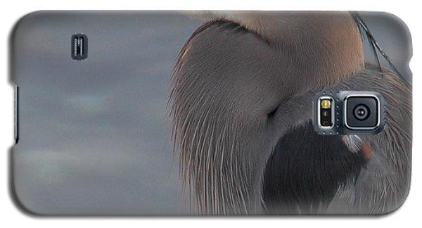 Early Bird 2 Galaxy S5 Case