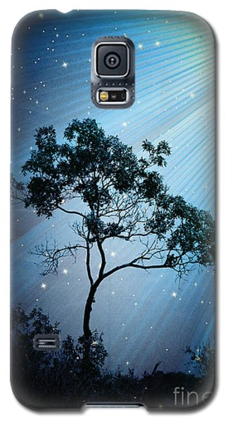 Galaxy S5 Case featuring the photograph Early Bloomer Light Trail -  No.4838 by Joe Finney