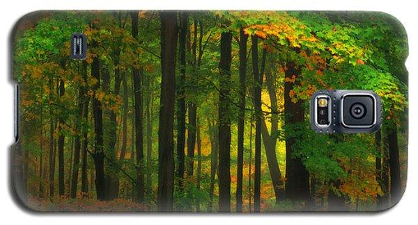 Early Fall 4 Galaxy S5 Case