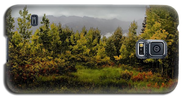 Galaxy S5 Case featuring the photograph Early Fall On Kebler Pass by Ellen Heaverlo