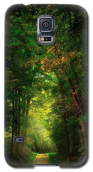 Early  Mist  Galaxy S5 Case