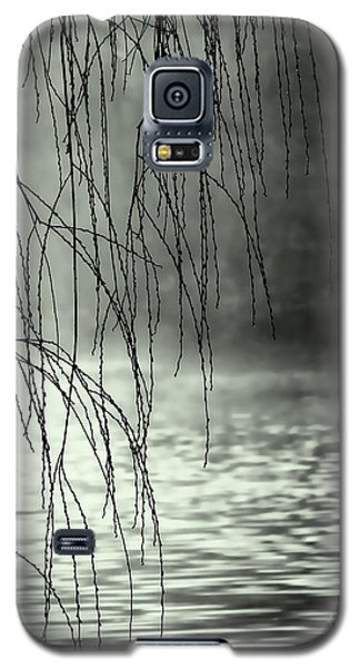 Early Morning Fog Galaxy S5 Case by Elaine Manley