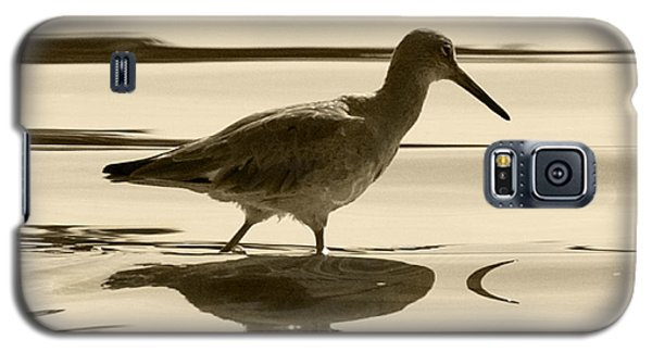 Early Morning In The Moss Landing Harbor Picture Of A Willet Galaxy S5 Case by Artist and Photographer Laura Wrede