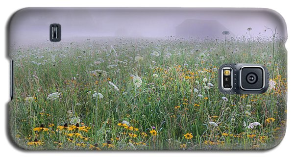 Early Morning Meadow Galaxy S5 Case