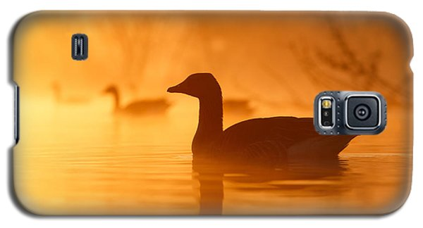 Geese Galaxy S5 Case - Early Morning Mood by Roeselien Raimond