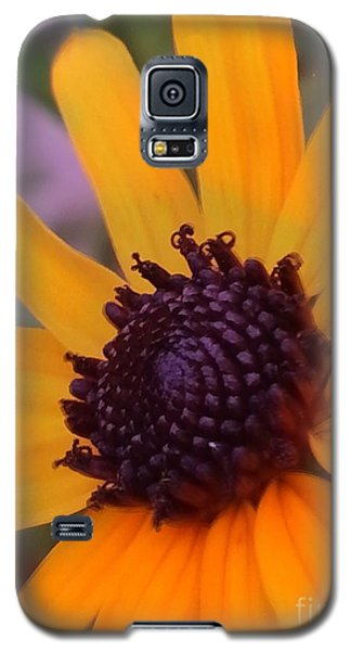 Early Morning Susan Galaxy S5 Case