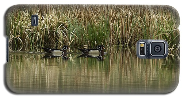Early Morning Wood Ducks Galaxy S5 Case