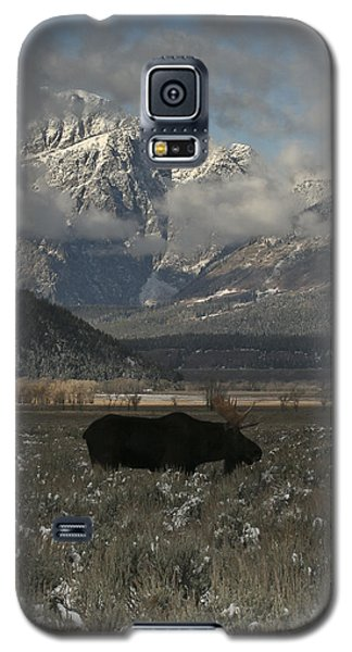 Galaxy S5 Case featuring the photograph Early Riser by Gary Hall