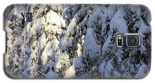 Early Snowfall Galaxy S5 Case by Jim Sauchyn