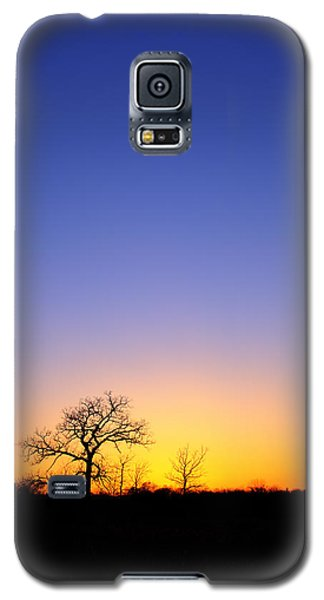 Early Spring Oak At Sunset Galaxy S5 Case