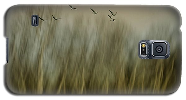 Geese Galaxy S5 Case - Early Spring Vision... by Yvette Depaepe