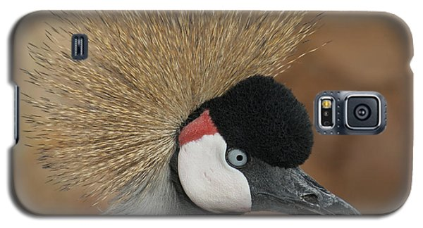 East African Crowned Crane Galaxy S5 Case