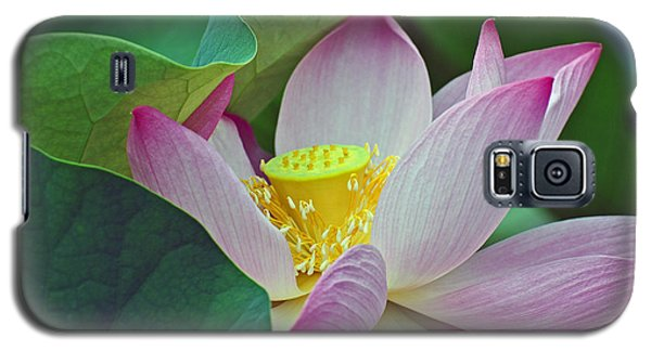 East Indian Lotus Galaxy S5 Case