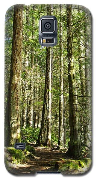 East Sooke Park Trail Galaxy S5 Case by Marilyn Wilson