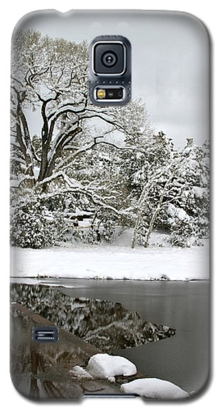 East Verde Winter Crossing Galaxy S5 Case