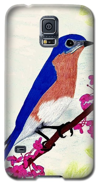 Galaxy S5 Case featuring the drawing Florida - Eastern - Blue Bird by D Hackett