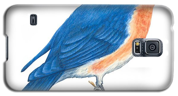 Eastern Bluebird Galaxy S5 Case by Anonymous