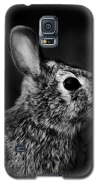 Eastern Cottontail Rabbit Portrait Galaxy S5 Case