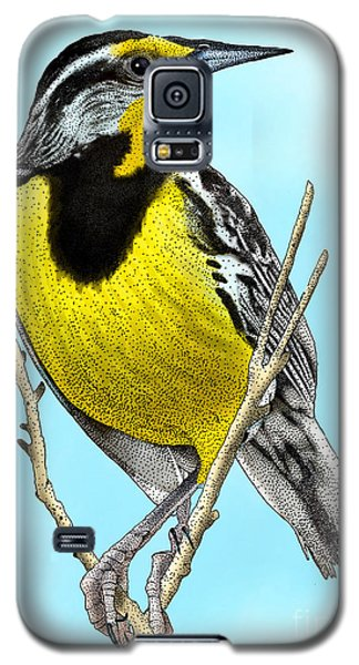 Eastern Meadowlark Galaxy S5 Case by Roger Hall