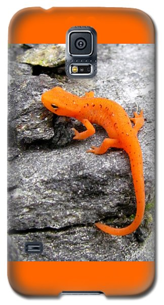 Orange Julius The Eastern Newt Galaxy S5 Case