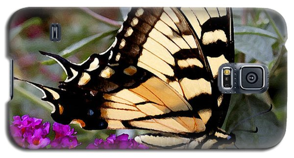 Eastern Tiger Butterfly Galaxy S5 Case