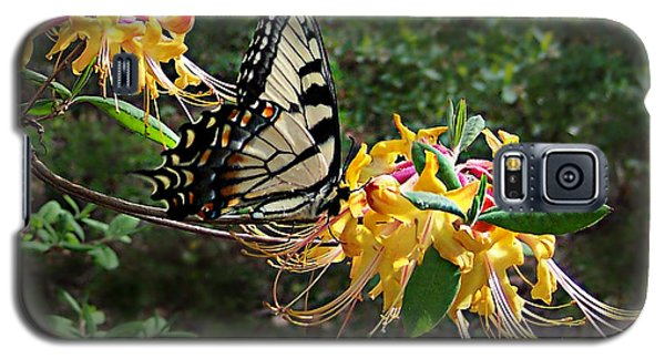 Galaxy S5 Case featuring the photograph Eastern Tiger Swallowtail Butterfly by William Tanneberger