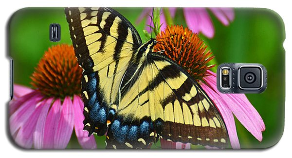 Galaxy S5 Case featuring the photograph Eastern Tiger Swallowtail Female by Rodney Campbell