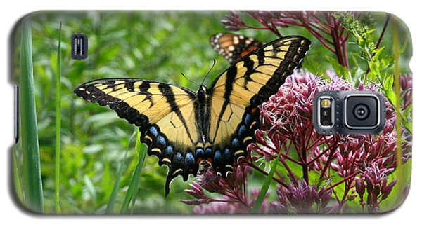 Eastern Tiger Swallowtail On Joe Pye Weed Galaxy S5 Case
