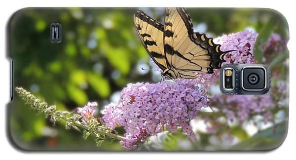 Eastern Tiger Swallowtail  Galaxy S5 Case by Teresa Schomig