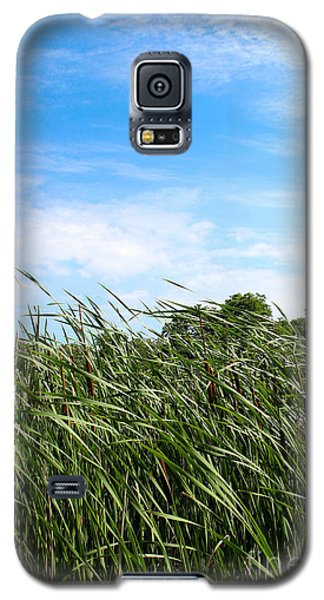 Galaxy S5 Case featuring the photograph Easy Breezy Cattails by Anita Oakley