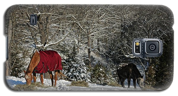Eating Hay In The Snow Galaxy S5 Case
