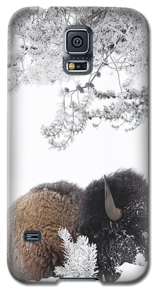 Eating Is Hard Work Galaxy S5 Case