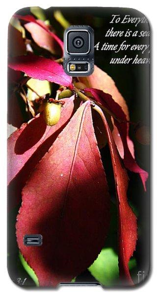 Ecclesiastes 3 Verse 1 Galaxy S5 Case by Sara  Raber