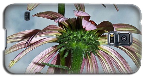 Echinacea A La Cloud... Galaxy S5 Case by Tammy Schneider