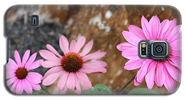 Galaxy S5 Case featuring the photograph Echinacea by Jesslyn Fraser