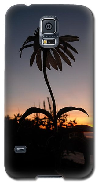 Echinacea Sunset Galaxy S5 Case