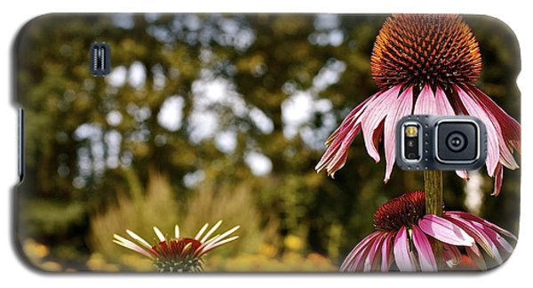 Echinacea With Bee Galaxy S5 Case by Linda Bianic