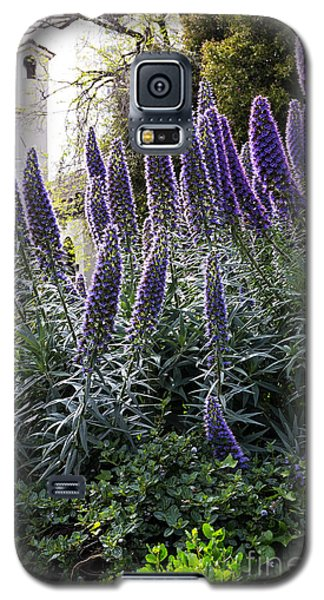 Echium And Tower Galaxy S5 Case