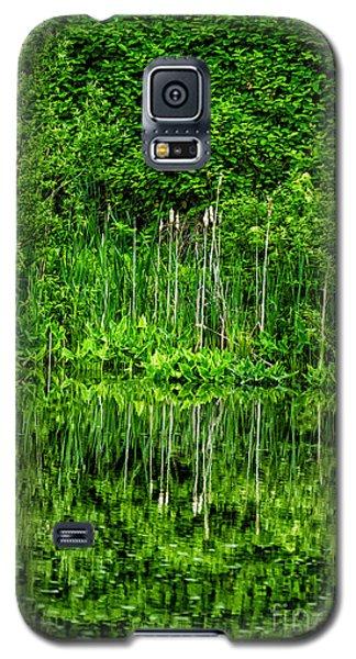 Eden 38 Oil Galaxy S5 Case