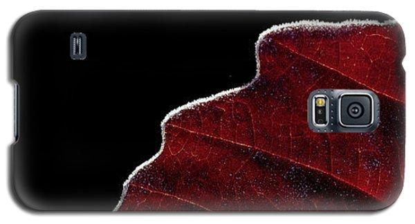 Edge Of Autumn Galaxy S5 Case
