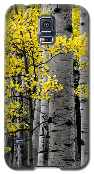 Galaxy S5 Case featuring the photograph Edge Of Night by The Forests Edge Photography - Diane Sandoval