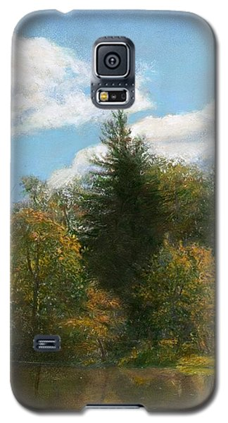 Edge Of The Pond Galaxy S5 Case