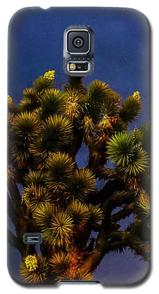 Edge Of Town Galaxy S5 Case by Angela J Wright