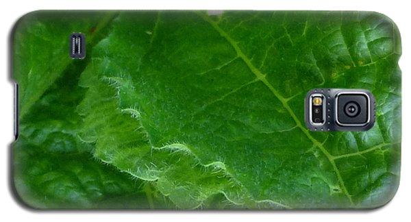 Edgy Galaxy S5 Case