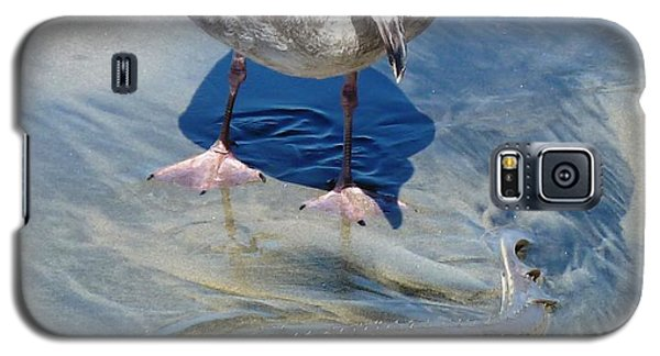 Galaxy S5 Case featuring the photograph Edible Fishi by Julia Ivanovna Willhite