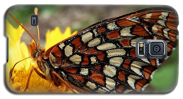 Galaxy S5 Case featuring the photograph Edith Checkerspot by Julia Hassett