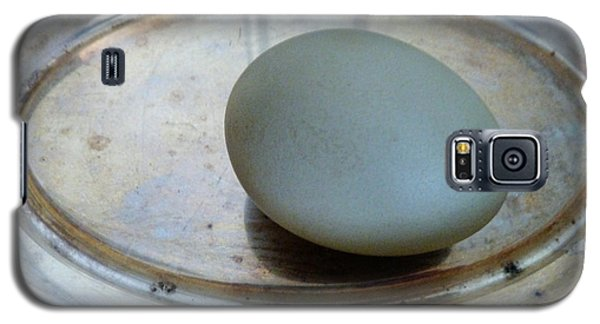 Egg On Silver Galaxy S5 Case
