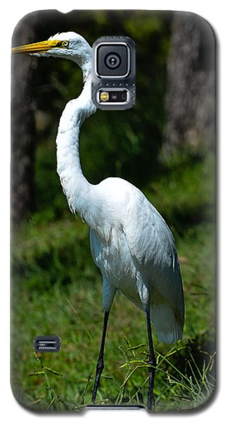 Egret - Full Length Galaxy S5 Case
