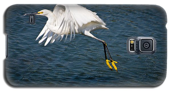 Galaxy S5 Case featuring the photograph Egret Aloft by Janis Knight