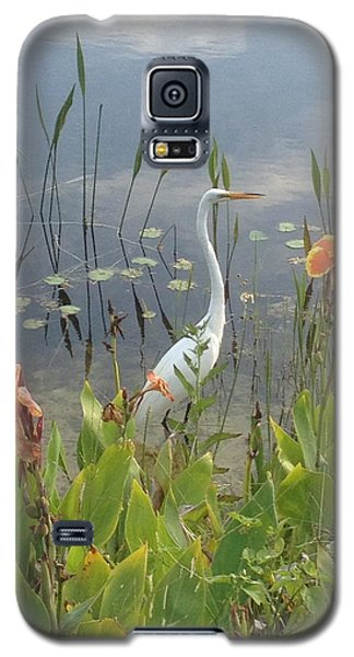 Egret And Iris Galaxy S5 Case